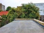 Roof Terrace demise